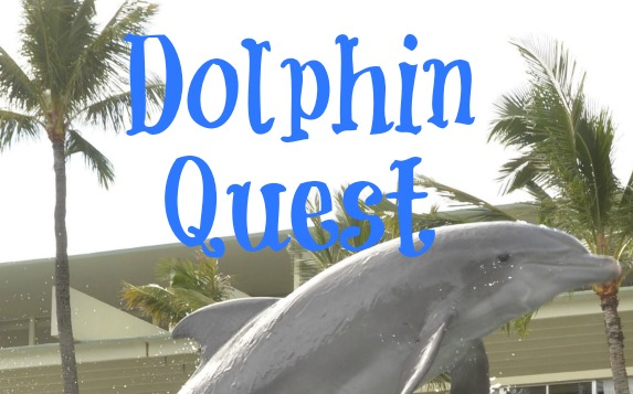 Adventures at Dolphin Quest